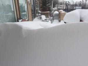 Snow - Nov 2015